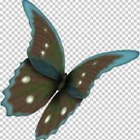 butterfly2v.jpg