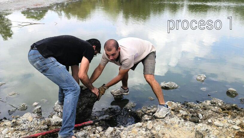 Nosgustaelcampito mejoras de h bitat en la laguna de - Spa en dos hermanas ...