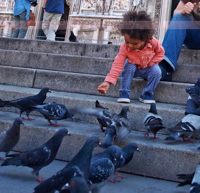 feeding pigeons at duomo