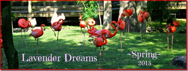 FlamingoBorderIMG_2023