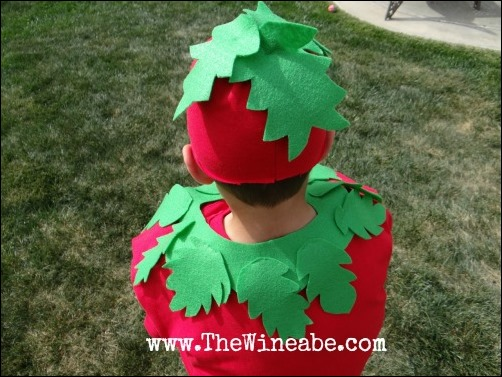 tomato leaves costume DIY