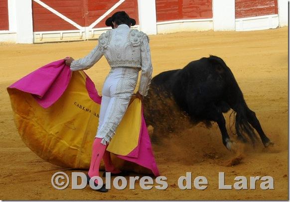 ©Dolores de Lara