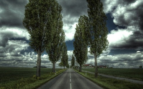 Along-the-Road