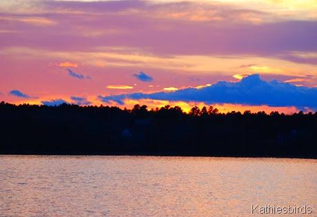 14. lavender evening-kab