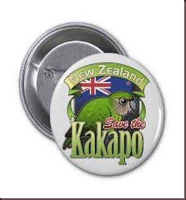 Amazing Pictures of Animals photo Nature exotic funny incredibel Zoo Kakapo birds Aves. Alex (5)