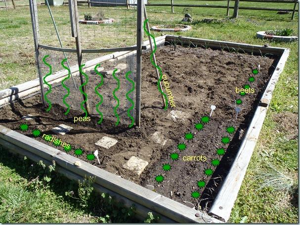 garden plan 03