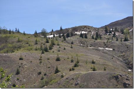 Mt St Helens, Wa 083