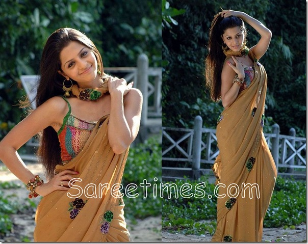 Vedika_Georgette_Saree