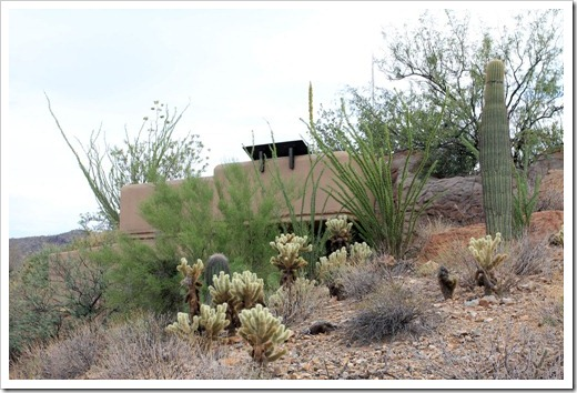 120728_ArizonaSonoraDesertMuseum_021