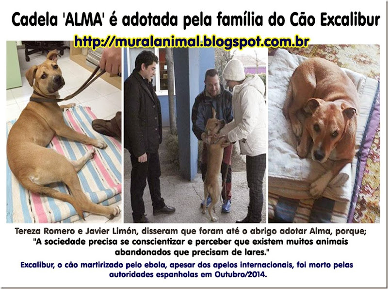 alma_excalibur