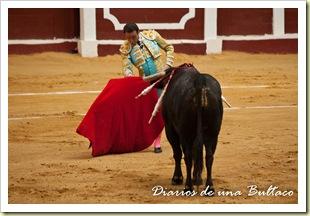 Toros_León-6
