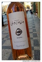 leocadie-Leukadios-rose