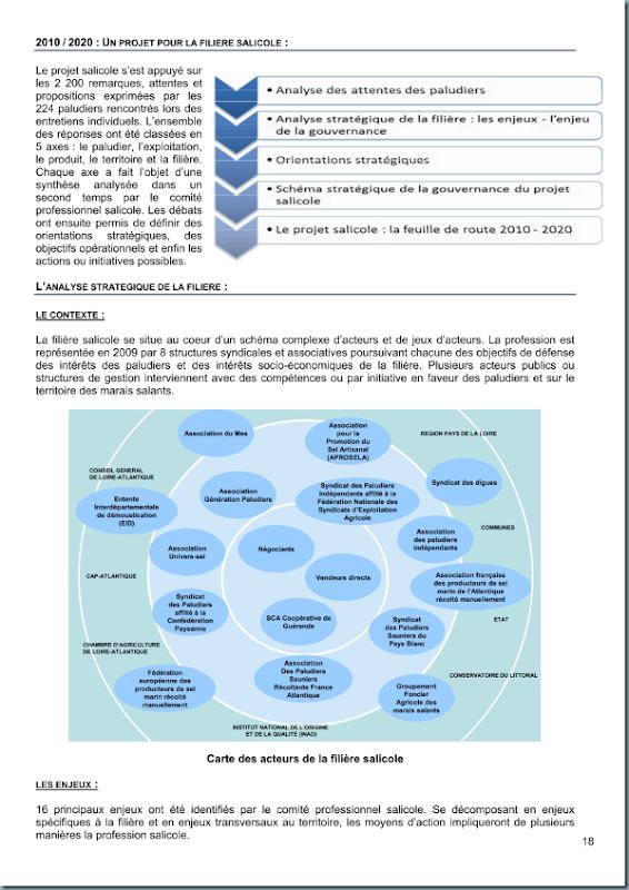 diagnostic_salicole_ca44_2011_page_019