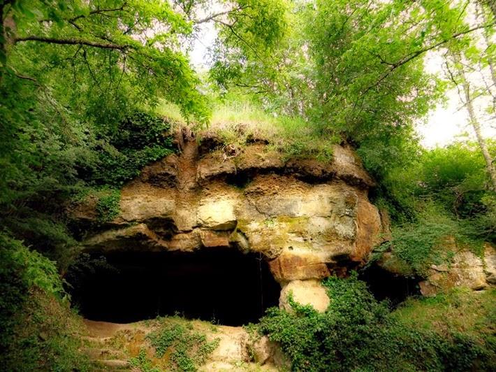 Vitozza la casa il bosco by josie furighedda gardening for Piani di caverna dell uomo
