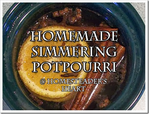 Simmer Potpourri  1