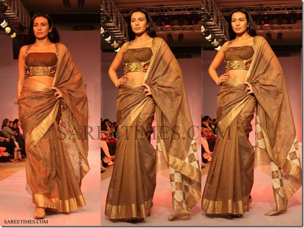 Samant_Chauhan_Brown_Saree