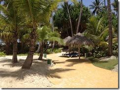 Punta Cana 148