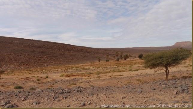 Desierto-327