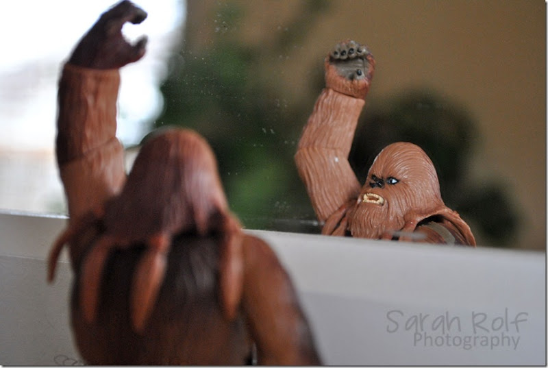chewbacca-high-fiving-himse