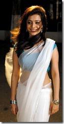 nisha-agarwal _hot in saree