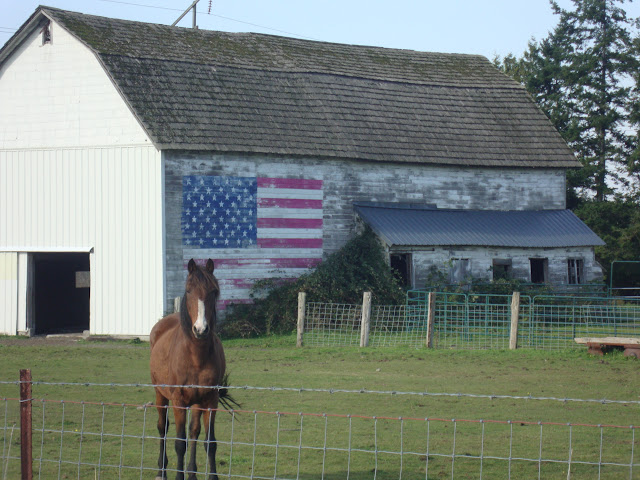 October 2010 - 2nd Place / America the beautiful! Country scene driving to Birch Bay / Credit: Viki Harris