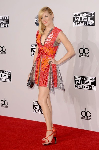 Elizabeth Banks attends the 2014 American Music Awards