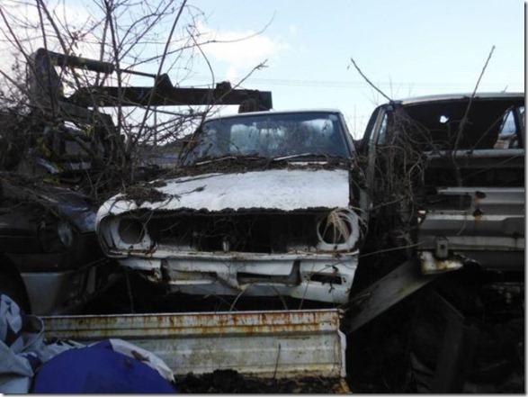 japan-graveyard-old-cars-26