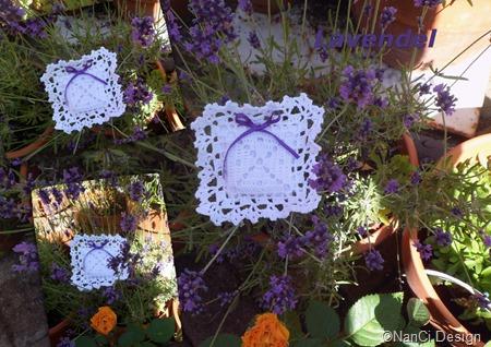 Lavendel C