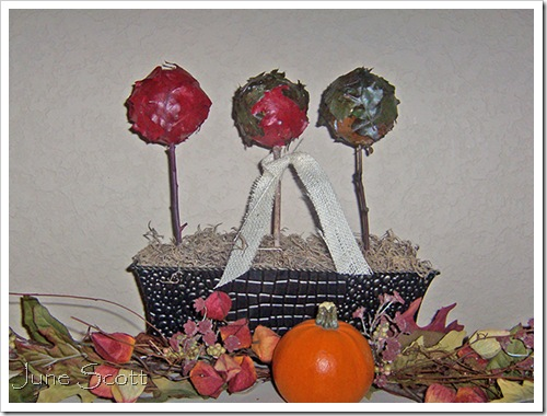 Topiaries_Pumpkin