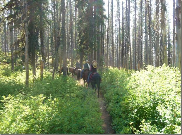 Horse trip 056