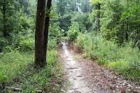 Tally's Trail Photo
