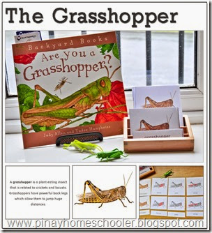 The Grasshopper Learning Pack