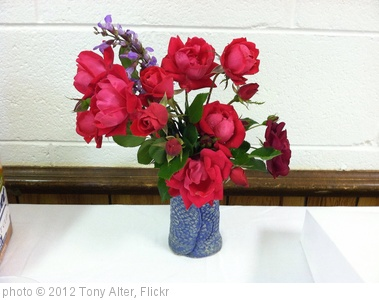 'Roses & Sage' photo (c) 2012, Tony Alter - license: http://creativecommons.org/licenses/by/2.0/