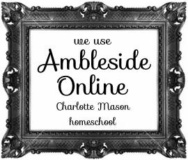 We use ambleside final