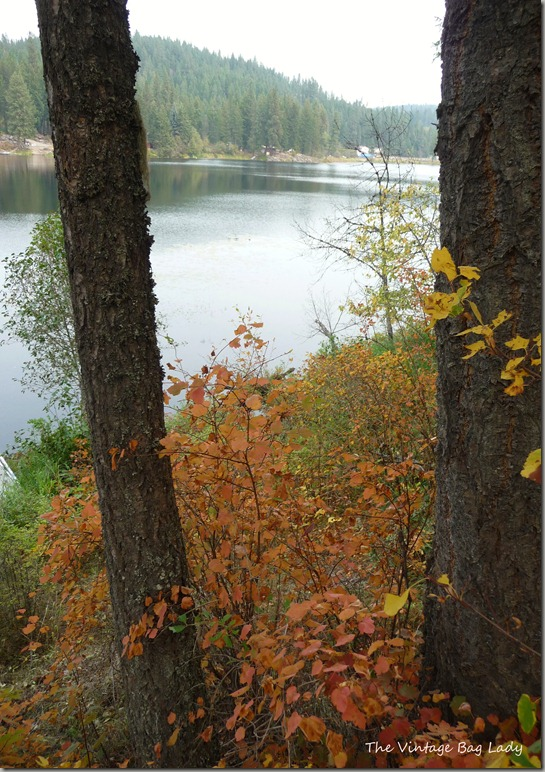 lake kelso 062