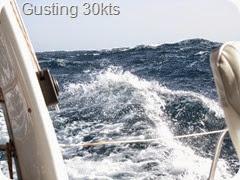 009 2-3mt Seas