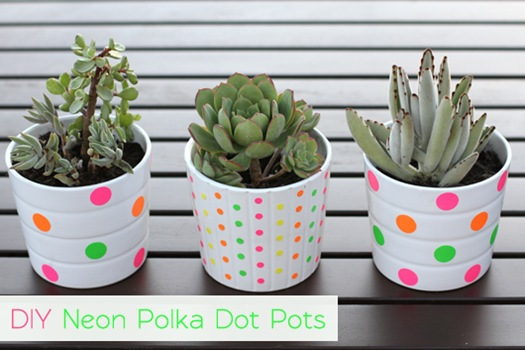 Neon-Polka-Dot-Pots