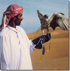 Falconry olahraga burung elang