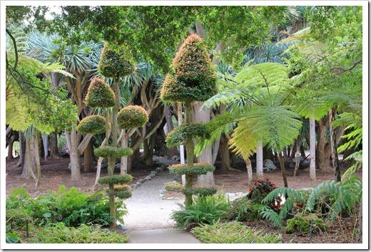 130403_Lotusland_Fern-Garden_06
