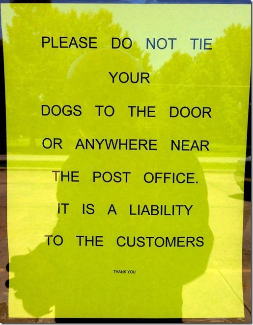 po dogs