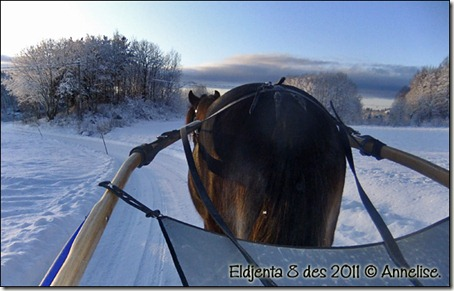 2011-jenta-8des_01