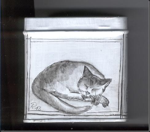 scatola gatto 3