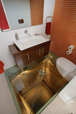 7. GLASS BOTTOM TOILET