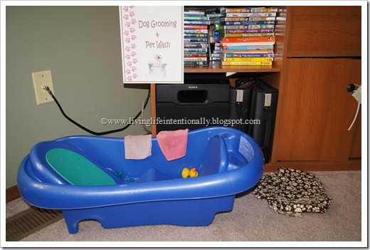 Kids Play Dog Grooming & Pet Was Station as a Dog Birthday Party Game