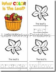 color booklet 1
