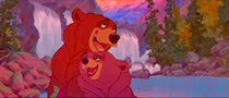 16 les ours amoureux