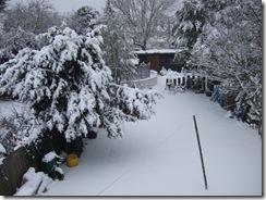 Snowjan2012 035