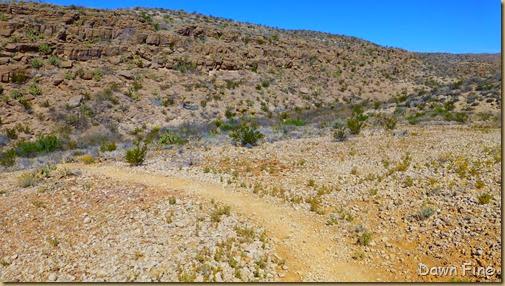 Rio Grande Village to hot springs_050