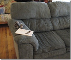 lumpy loveseat