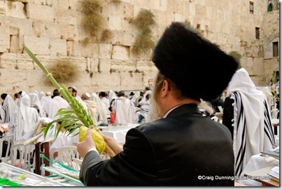 Man with four species during Sukkot at Western Wall, cd091006002
